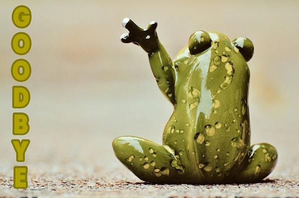 手を振るカエル